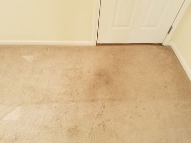 Before & After Carpet Cleaning in Anniston, AL (1)