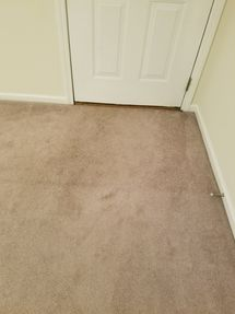 Before & After Carpet Cleaning in Anniston, AL (2)