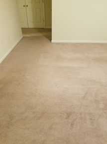 Commercial carpet cleaning in Rosa AL by S&L Cleaning Services, LLC